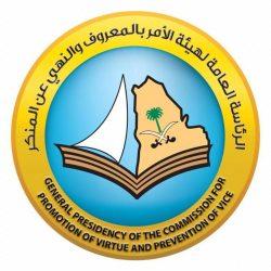 سمو وزير الرياضة يشارك في الاجتماع الافتراضي للدورة 43 لمجلس وزراء الشباب والرياضة العرب