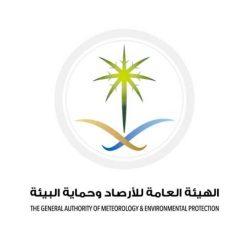 ( مفاتيح القلوب  ) .. برنامج جديد للإعلامية منال عبداللطيف على قناة المحور