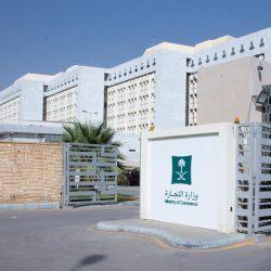 تعلق طفل ياباني بالعلم السعودي يدفعه لحمله أينما ذهب.. والسفارة تحتفي به وتنشر رسالة والدته