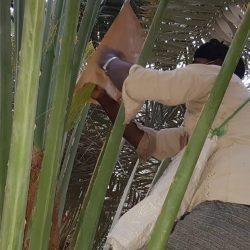 شاهد فيديو احتفالات بطل دورة الصمود الشبابية2021 بمحافظة المجاردة
