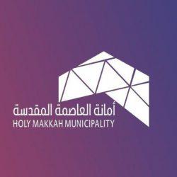 أمانة مكة تغلق منشأة لعدم تقيدها بالاشتراطات الصحية وتتلف 3 أطنان من الخضروات الفاسدة