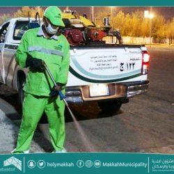 أمانة العاصمة المقدسة تنفذ جولات رقابية على محال تأجير السيارات